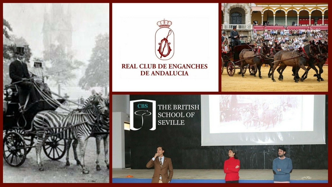 Visita del Real Club de Enganches de Andalucía al CBS, Colegio Británico de Sevilla